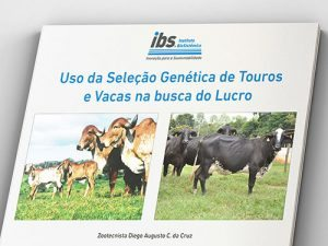 img-padrao-ebook-diego-3-500